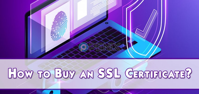 How to Buy an SSL Certificate?