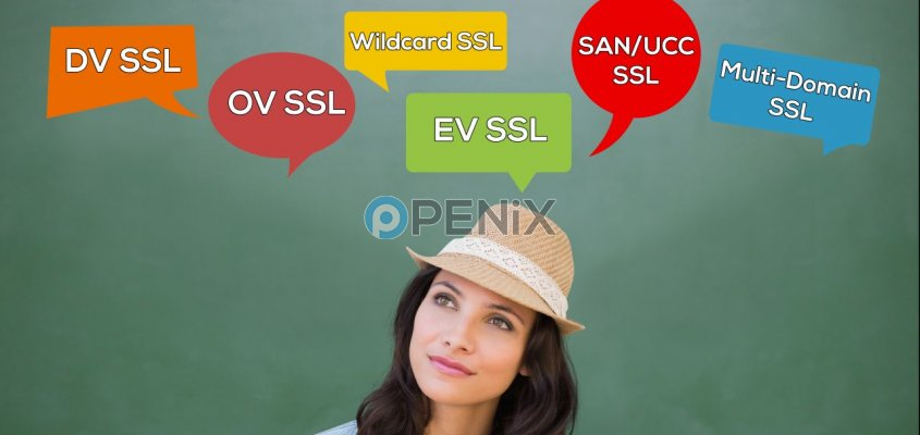 What are SSL Certificate Types?